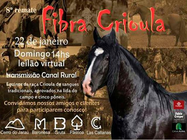 Leilão Fibra Crioula chega a sua 8º edição