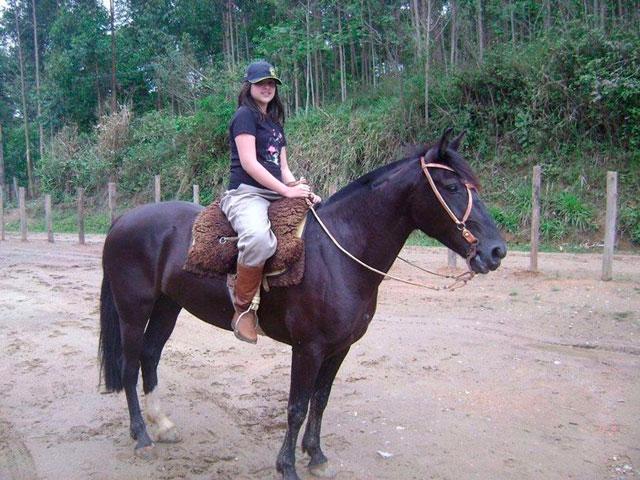 Cavalo crioulo ensina o verdadeiro espírito do Natal