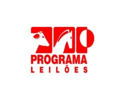 Leilão Virtual Liquidação Cavalos Crioulos Haras Vargas