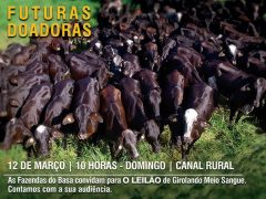 Leilão Virtual Programa do Leite Fazendas do Basa