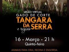 Leilão Virtual Tangará da Serra e Região