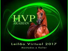 Leilão Virtual 2017 Haras Vila dos Pinheiros – HVP