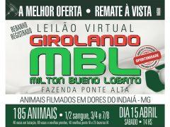 1ª Leilão Virtual Genética Girolando MBL