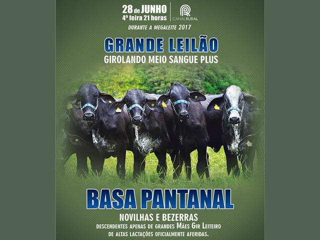 Leilão Girolando Basa Pantanal
