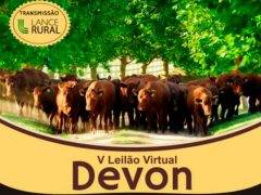 V Leilão Virtual Devon
