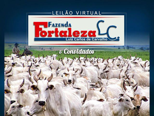 Leilão Virtual Fazenda Fortaleza