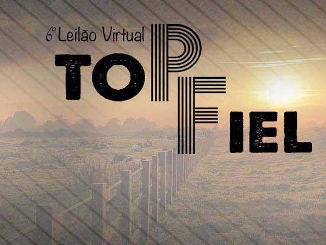 6º Leilão Virtual Top Fiel