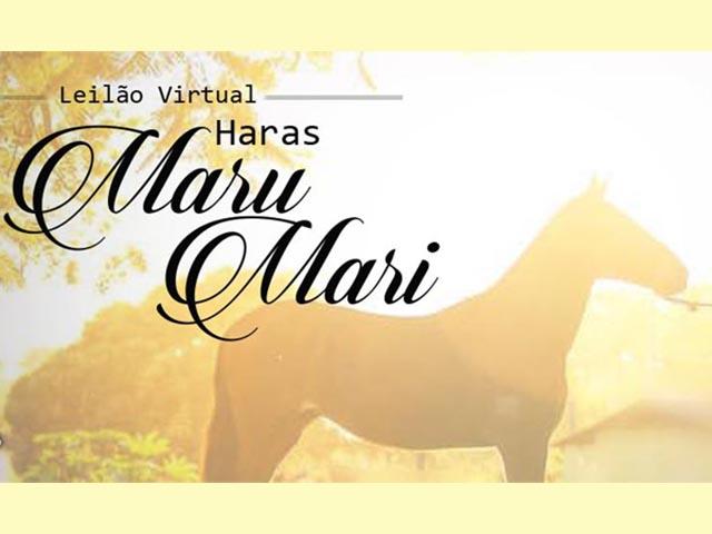 Leilão Virtual Haras Maru Mari