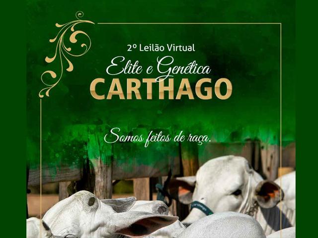 2º Leilão Virtual Elite e Genética Carthago