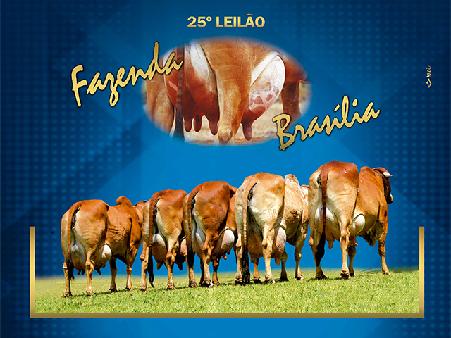 25º Leilão Virtual Fazenda Brasília