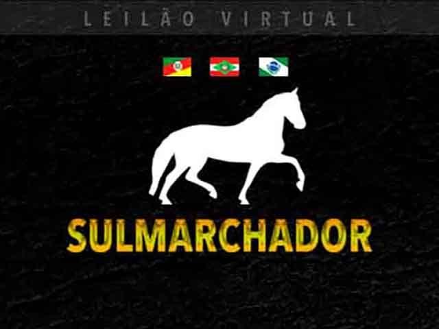 Leilão Virtual Sul Marchador