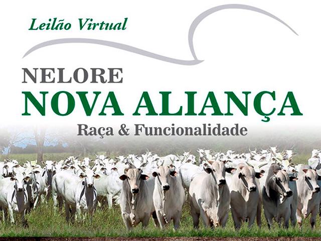 Leilão Virtual Nelore Nova Aliança