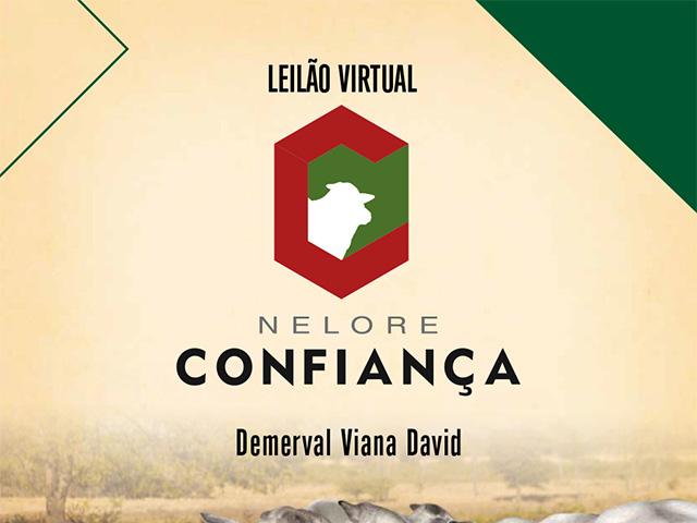 Leilão Virtual Fazenda Confiança