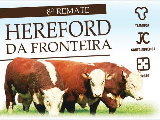 8º Remate Hereford da Fronteira