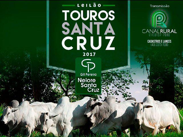 Leilão Touros Santa Cruz