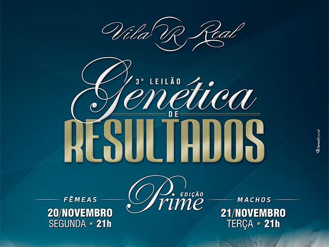 3º Leilão Virtual Genética de Resultados Vila Real – Fêmeas