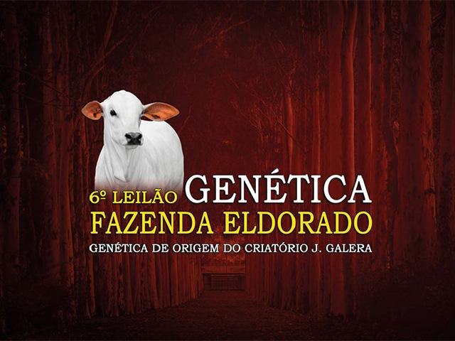 6º Leilão Genética Fazenda Eldorado