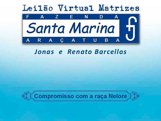 Leilão Virtual Santa Marina