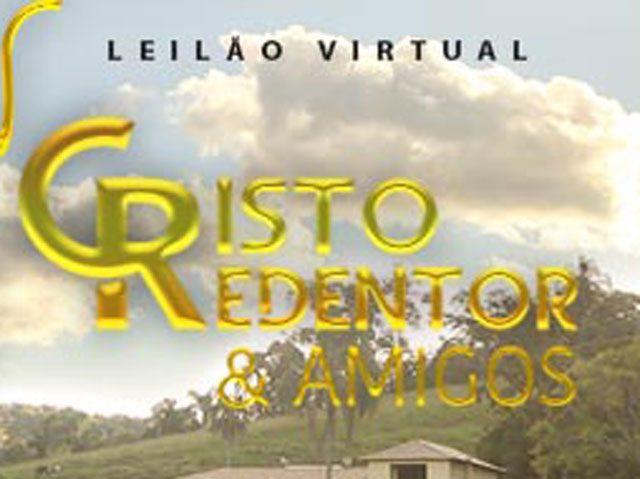 Leilão Virtual Cristo Redentor & Amigos