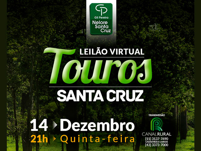 Leilão Virtual Touros Santa Cruz