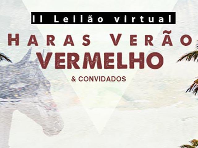 II Leilão Virtual Haras Verão Vermelho & Convidados