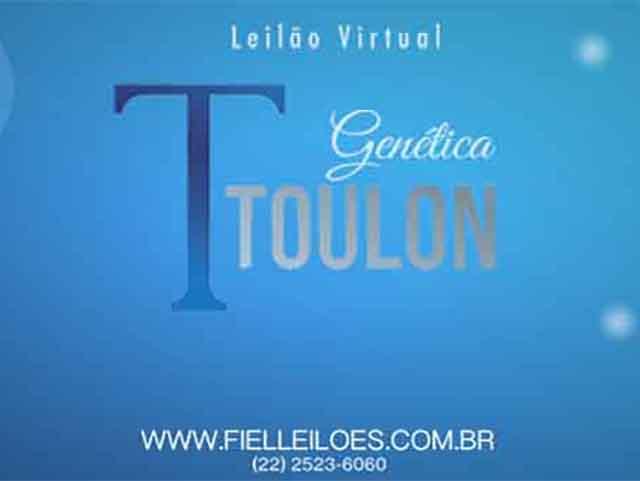 Leilão Virtual Genética Toulon