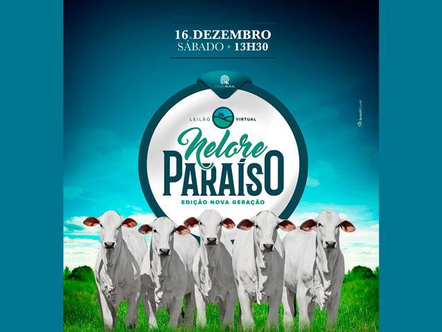 Nelore Paraíso oferta 200 bezerros da nova geração