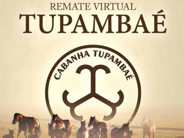 Remate Tupambaé