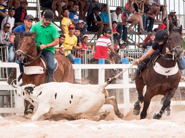 Simone Fernandes Uma Vaqueira De Tradição Lance Rural