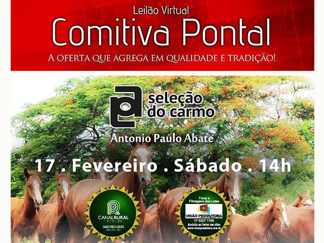 Leilão Virtual Comitiva Pontal 2018