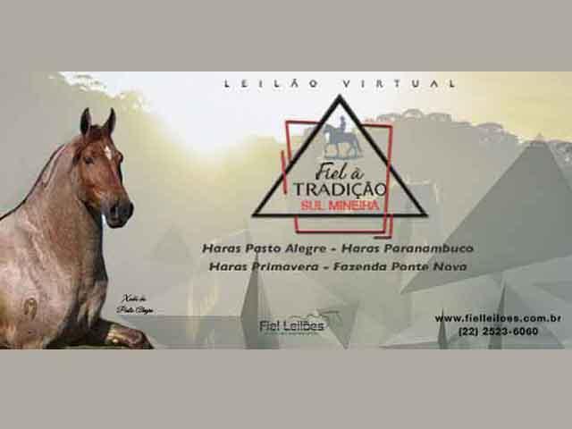 Leilão Virtual Fiel à Tradição Sul Mineira