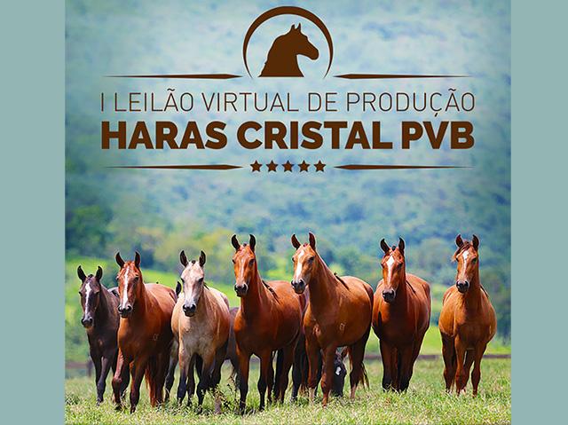 I Leilão Virtual de Produção Haras Cristal PVB