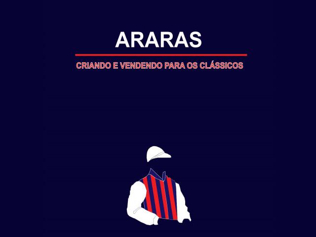Leilão de Reprodução do Haras Santa Maria de Araras e Convidados