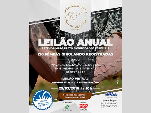 Leilão Virtual Gir e Girolando Fazenda Mato Preto & Convidados