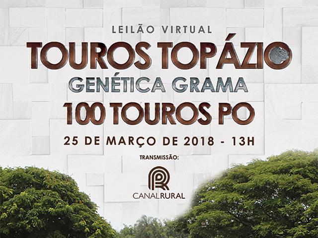 Leilão Virtual Touros Topázio Genética Grama