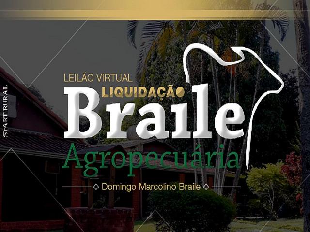 Leilão Virtual Liquidação Braile Agropecuária