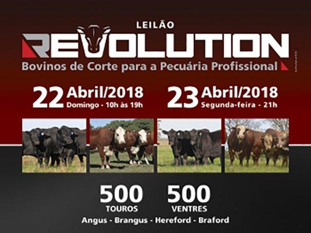 Leilão Virtual Revolution
