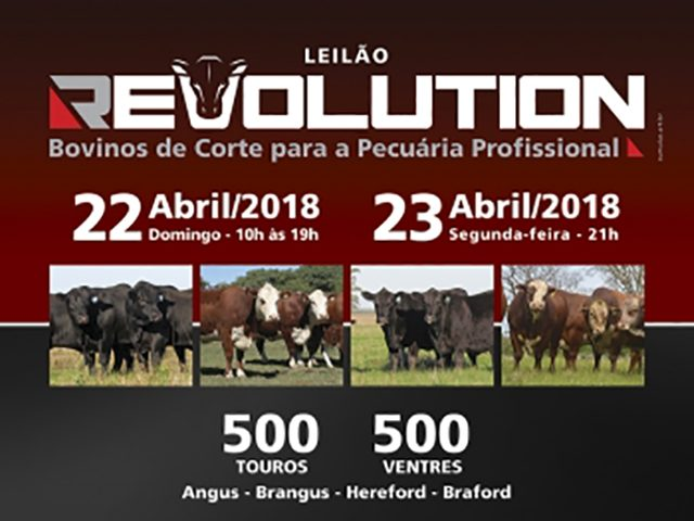 Leilão Virtual Revolution – 2ª Etapa