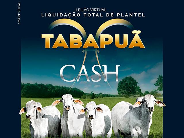 Leilão Virtual Liquidação Total de Plantel Tabapuã Cash