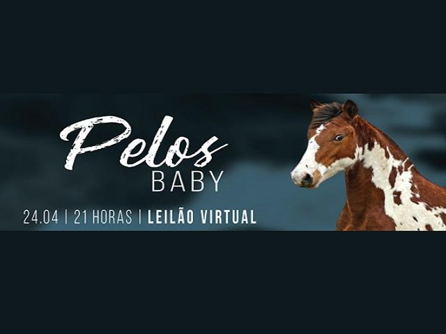 Leilão Virtual Pelos Baby