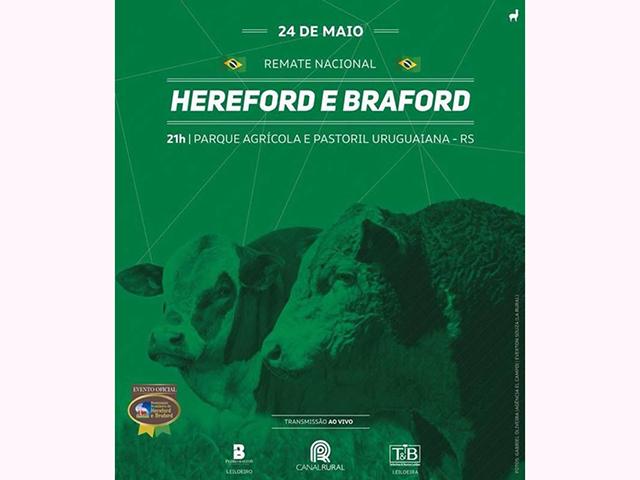 Remate Nacional Hereford e Braford