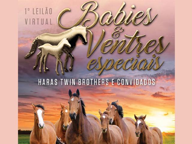 1º Leilão Virtual Babies & Ventres Especiais Haras Twin Brothers e Convidados
