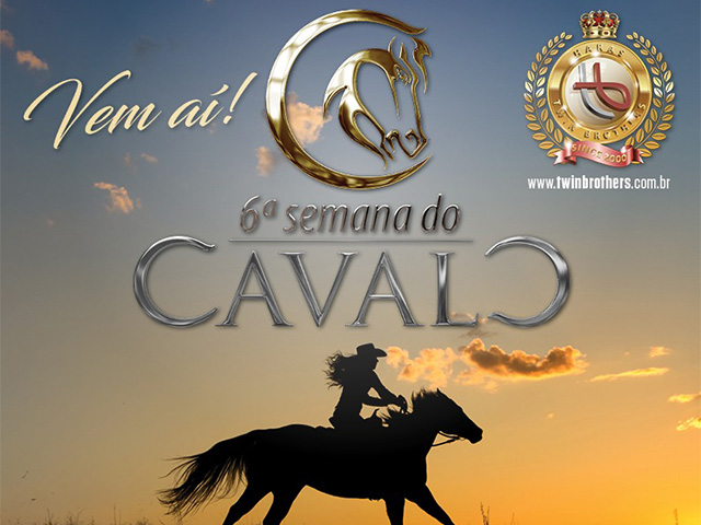 6ª Semana do Cavalo – Prova de Team Roping – Som. 4E