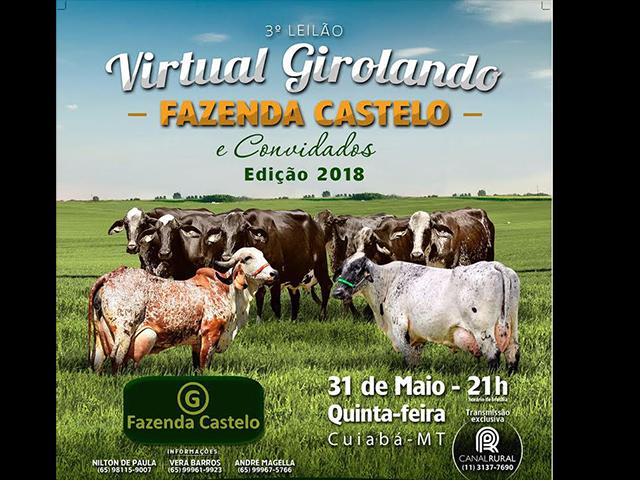 3º Leilão Virtual Girolando Fazenda Castelo