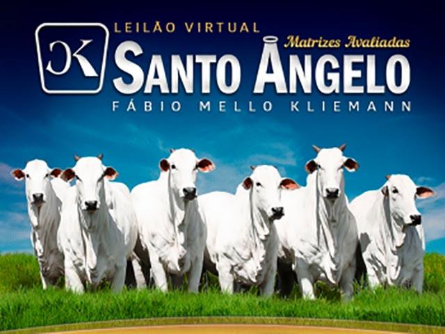 Leilão Virtual Matrizes Avaliadas Santo Angelo