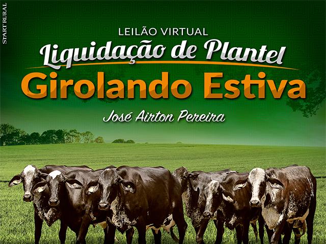 Leilão Virtual Liquidação de Plantel Girolando Estiva