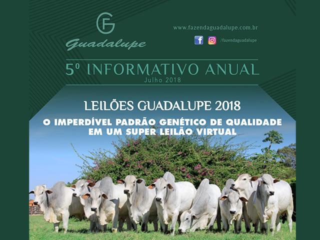 Leilão Virtual Guadalupe – Prenhezes & Fêmeas