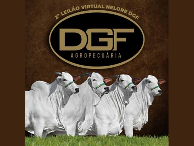 2º Leilão Virtual DGF Agropecuária