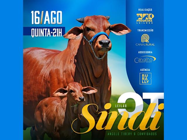 Leilão Virtual Sindi O.T
