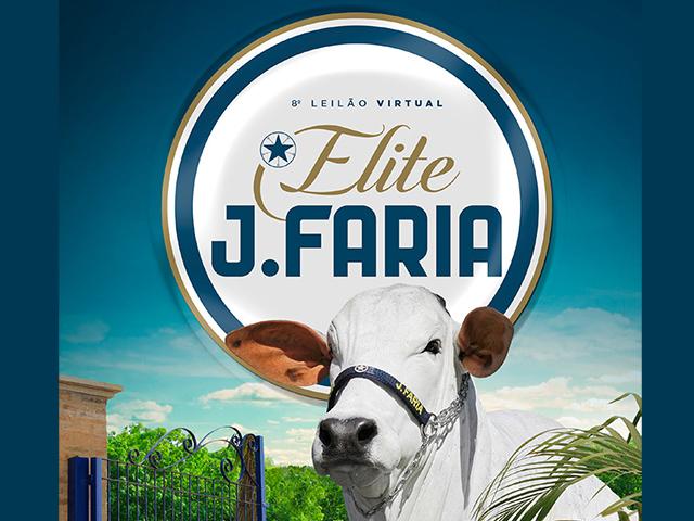 8º Leilão Virtual Elite J. Faria